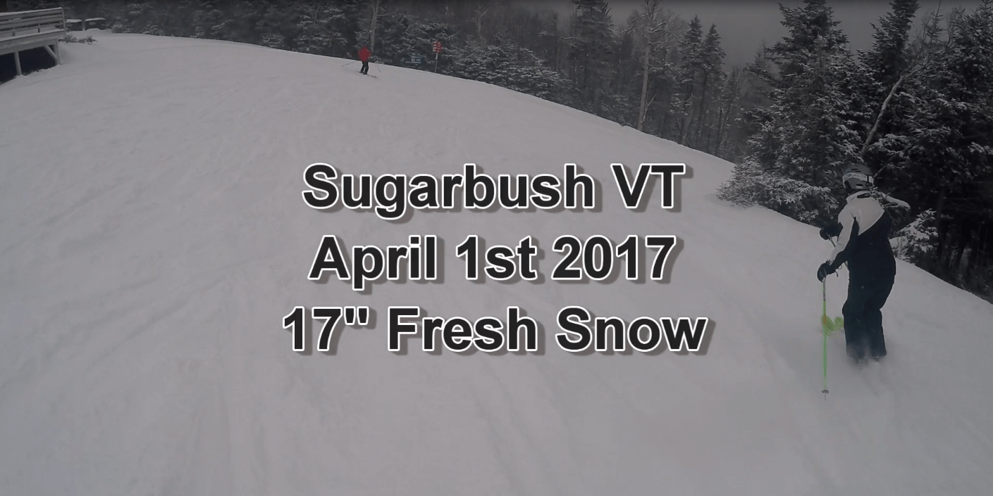 April Fools Powder Sugarbush